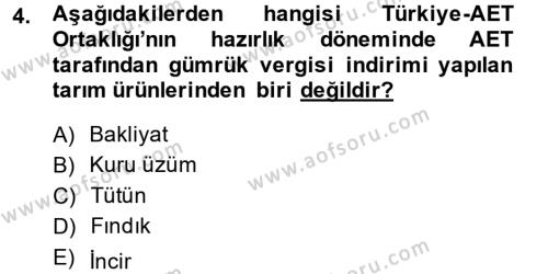 Uluslararası İlişkiler Bölümü 8. Yarıyıl Avrupa Birliği ve Türkiye İlişkileri Dersi 2014 Yılı Bahar Dönemi Ara Sınavı 4. Soru
