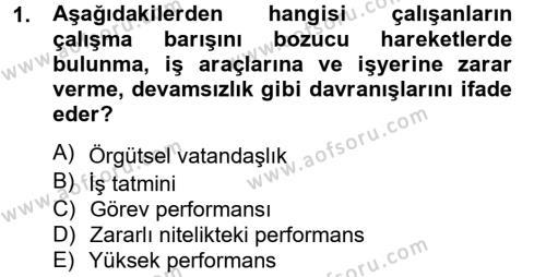 İnsan Kaynakları Yönetimi Bölümü 4. Yarıyıl Performans Yönetimi Dersi 2013 Yılı Bahar Dönemi Ara Sınavı 1. Soru