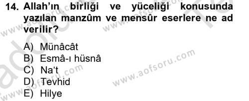 Türk İslam Edebiyatı Dersi Tek Ders Sınavı Deneme Sınav Soruları 14. Soru