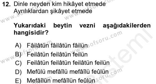Türk İslam Edebiyatı Dersi Ara Sınavı Deneme Sınav Soruları 12. Soru