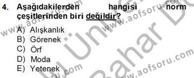 Kültürel Miras ve Turizm Bölümü 4. Yarıyıl Kültürlerarası İletişim Dersi 2013 Yılı Bahar Dönemi Dönem Sonu Sınavı 4. Soru