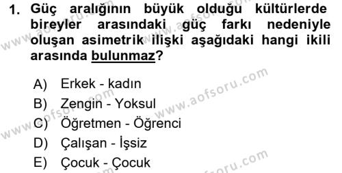 İnsan Kaynakları Yönetimi Bölümü 4. Yarıyıl Kültürlerarası İletişim Dersi 2016 Yılı Bahar Dönemi Ara Sınavı 1. Soru