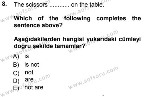 Ingilizce 1 Dersi Ara Sınavı Deneme Sınav Soruları 8. Soru