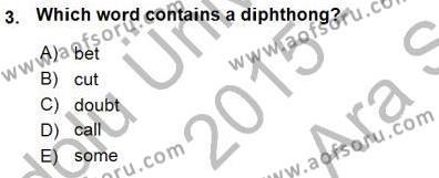 Dilbilim 1 Dersi 2015 - 2016 Yılı (Vize) Ara Sınav Soruları 3. Soru
