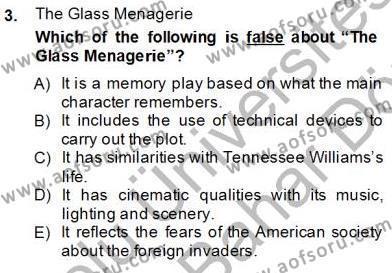 İngilizce Öğretmenliği Bölümü 6. Yarıyıl İngiliz/Amerikan Edebiyatı II Dersi 2013 Yılı Bahar Dönemi Dönem Sonu Sınavı 3. Soru