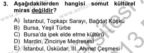 Kültürel Miras ve Turizm Bölümü 2. Yarıyıl Restorasyon ve Koruma İlkeleri Dersi 2013 Yılı Bahar Dönemi Dönem Sonu Sınavı 3. Soru