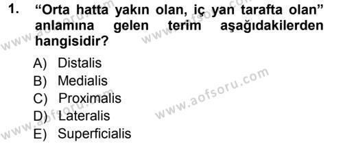 Temel Veteriner Anatomi Dersi 2012 - 2013 Yılı Ara Sınavı 1. Soru
