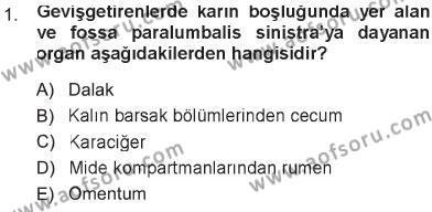 Laborant ve Veteriner Sağlık Bölümü 1. Yarıyıl Temel Veteriner Anatomi Dersi 2013 Yılı Güz Dönemi Tek Ders Sınavı 1. Soru