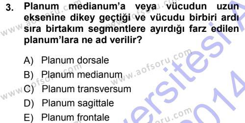 Temel Veteriner Anatomi Dersi 2013 - 2014 Yılı (Vize) Ara Sınav Soruları 3. Soru