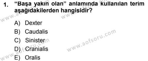 Temel Veteriner Anatomi Dersi 2013 - 2014 Yılı Tek Ders Sınavı 1. Soru