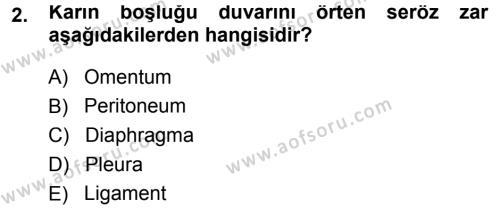 Temel Veteriner Anatomi Dersi 2013 - 2014 Yılı Tek Ders Sınavı 2. Soru