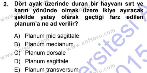 Temel Veteriner Anatomi Dersi 2014 - 2015 Yılı Ara Sınavı 2. Soru