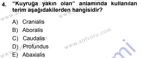 Temel Veteriner Anatomi Dersi 2014 - 2015 Yılı (Vize) Ara Sınavı 4. Soru
