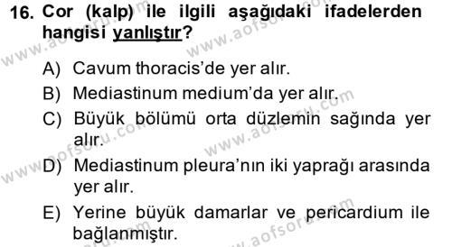 Temel Veteriner Anatomi Dersi 2014 - 2015 Yılı Dönem Sonu Sınavı 16. Soru 1. Soru