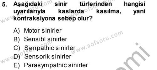 Temel Veteriner Anatomi Dersi 2014 - 2015 Yılı Dönem Sonu Sınavı 5. Soru 1. Soru