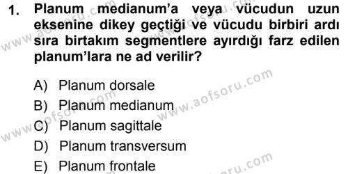 Temel Veteriner Anatomi Dersi 2014 - 2015 Yılı Tek Ders Sınavı 1. Soru