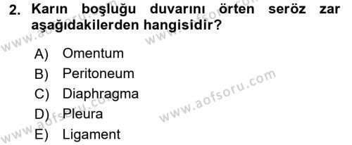 Temel Veteriner Anatomi Dersi 2015 - 2016 Yılı Tek Ders Sınav Soruları 2. Soru