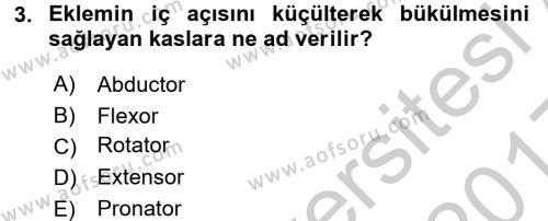 Temel Veteriner Anatomi Dersi 2016 - 2017 Yılı 3 Ders Sınav Soruları 3. Soru