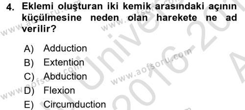Temel Veteriner Anatomi Dersi 2016 - 2017 Yılı Ara Sınavı 4. Soru