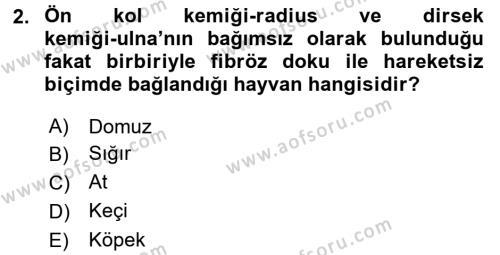 Temel Veteriner Anatomi Dersi 2017 - 2018 Yılı (Vize) Ara Sınavı 2. Soru