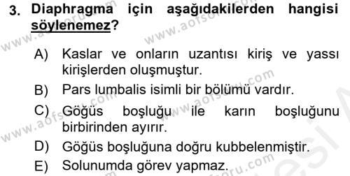 Temel Veteriner Anatomi Dersi 2017 - 2018 Yılı (Final) Dönem Sonu Sınav Soruları 3. Soru