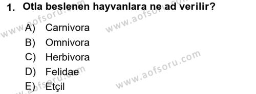 Temel Veteriner Anatomi Dersi 2018 - 2019 Yılı (Vize) Ara Sınavı 1. Soru