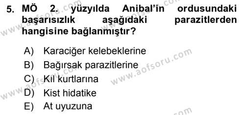 Temel Veteriner Parazitoloji Dersi Ara Sınavı Deneme Sınav Soruları 5. Soru