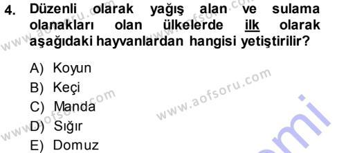 Temel Zootekni Dersi 2013 - 2014 Yılı (Vize) Ara Sınav Soruları 4. Soru