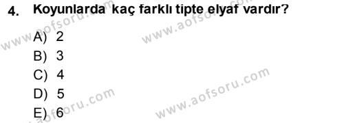 Temel Zootekni Dersi 2013 - 2014 Yılı (Final) Dönem Sonu Sınav Soruları 4. Soru