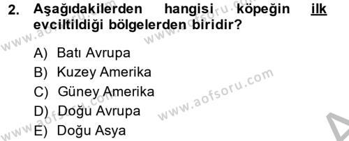 Temel Zootekni Dersi 2014 - 2015 Yılı (Final) Dönem Sonu Sınav Soruları 2. Soru