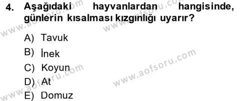 Temel Zootekni Dersi 2014 - 2015 Yılı (Final) Dönem Sonu Sınav Soruları 4. Soru