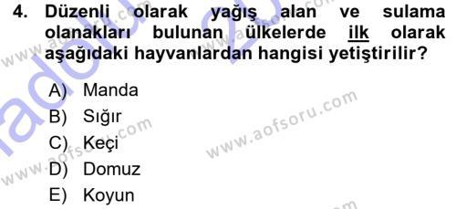 Temel Zootekni Dersi 2015 - 2016 Yılı (Vize) Ara Sınav Soruları 4. Soru