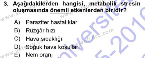 Temel Zootekni Dersi 2015 - 2016 Yılı Dönem Sonu Sınavı 3. Soru
