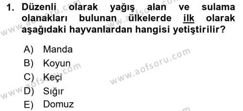 Temel Zootekni Dersi 2018 - 2019 Yılı (Vize) Ara Sınav Soruları 1. Soru