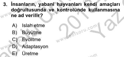 Temel Zootekni Dersi 2018 - 2019 Yılı Yaz Okulu Sınav Soruları 3. Soru