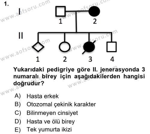 Temel Veteriner Genetik Dersi 2018 - 2019 Yılı 3 Ders Sınav Soruları 1. Soru