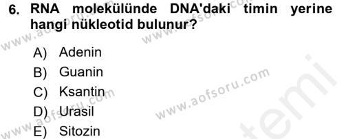 Temel Veteriner Mikrobiyoloji ve İmmünoloji Dersi Ara Sınavı Deneme Sınav Soruları 6. Soru