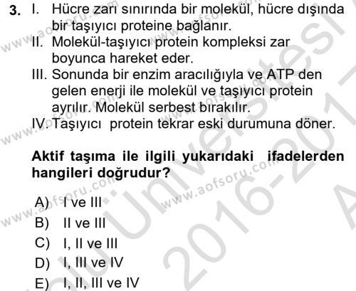 Temel Veteriner Fizyoloji Dersi Ara Sınavı Deneme Sınav Soruları 3. Soru