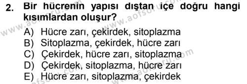 Hücre Kimyası Dersi 2012 - 2013 Yılı (Final) Dönem Sonu Sınavı 2. Soru