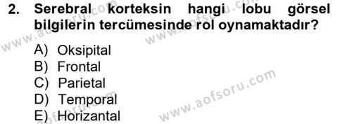 Hayvan Davranışları ve Refahı Dersi 2012 - 2013 Yılı (Vize) Ara Sınavı 2. Soru