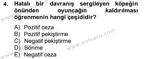 Hayvan Davranışları ve Refahı Dersi 2012 - 2013 Yılı (Vize) Ara Sınavı 4. Soru