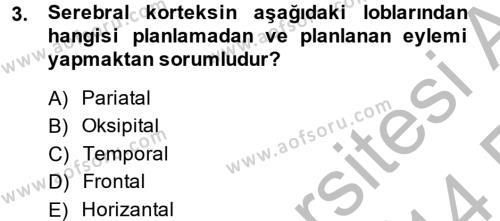Hayvan Davranışları ve Refahı Dersi 2013 - 2014 Yılı (Vize) Ara Sınavı 3. Soru