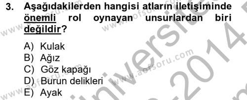 Hayvan Davranışları ve Refahı Dersi 2013 - 2014 Yılı Dönem Sonu Sınavı 3. Soru