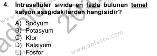 Temel Veteriner Biyokimya Dersi 2012 - 2013 Yılı (Vize) Ara Sınavı 4. Soru