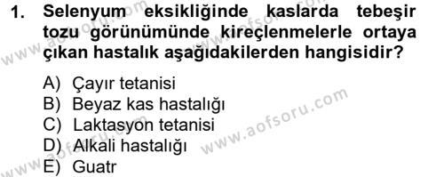 Temel Veteriner Biyokimya Dersi 2012 - 2013 Yılı (Final) Dönem Sonu Sınav Soruları 1. Soru
