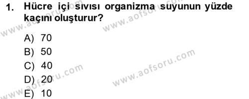 Temel Veteriner Biyokimya Dersi 2014 - 2015 Yılı (Final) Dönem Sonu Sınav Soruları 1. Soru