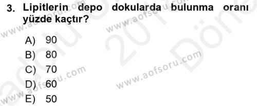 Temel Veteriner Biyokimya Dersi 2018 - 2019 Yılı (Final) Dönem Sonu Sınav Soruları 3. Soru