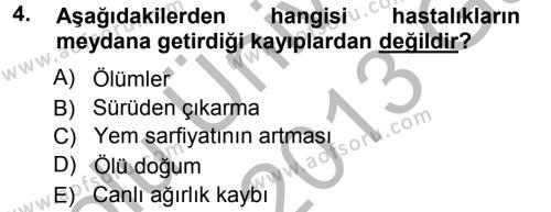 Temel Sürü Sağlığı Yönetimi Dersi 2012 - 2013 Yılı Ara Sınavı 4. Soru
