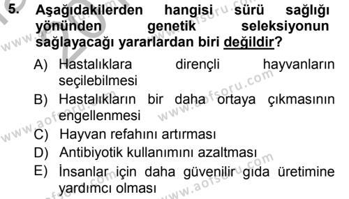Temel Sürü Sağlığı Yönetimi Dersi 2012 - 2013 Yılı (Vize) Ara Sınavı 5. Soru
