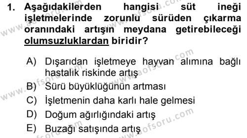 Temel Sürü Sağlığı Yönetimi Dersi 2015 - 2016 Yılı (Vize) Ara Sınav Soruları 1. Soru